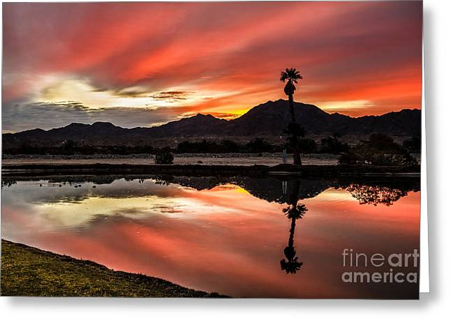 Bale Greeting Cards - Beautiful Reflections Greeting Card by Robert Bales