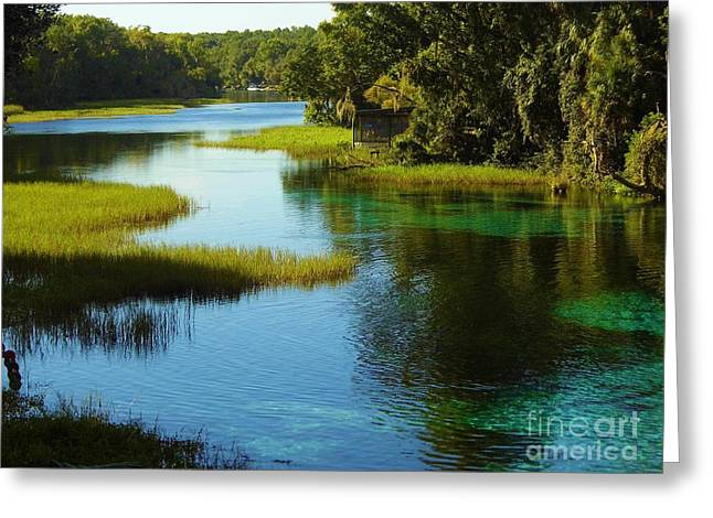 Fed Greeting Cards - Beautiful River Greeting Card by D Hackett