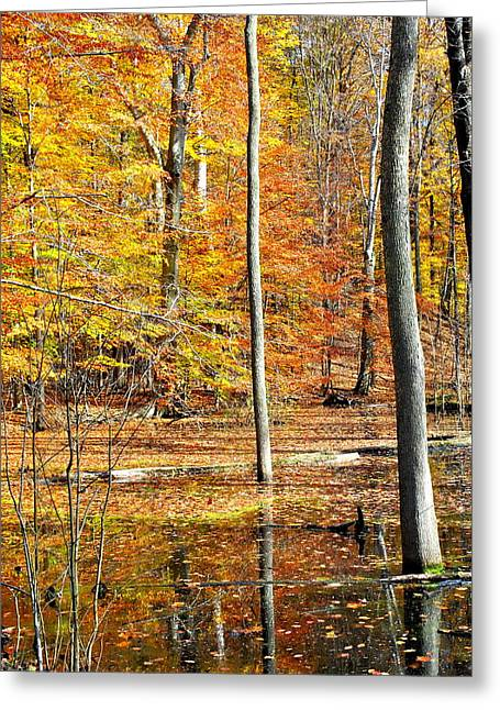 Beautiful Greeting Card by Frozen in Time Fine Art Photography