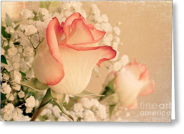 Babys Breaths Greeting Cards - Beautiful Rose Greeting Card by Lena Auxier