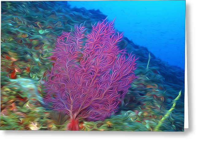 Sealive Paintings Greeting Cards - Beautiful Sea fan coral 2 Greeting Card by Lanjee Chee