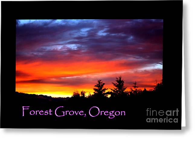 Sunset Posters Greeting Cards - Beautiful Skies Forest Grove Greeting Card by Nick Gustafson