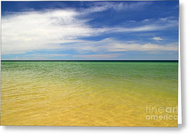Photographs Photographs Greeting Cards - Beautiful St George Island Water Greeting Card by Holden Parker