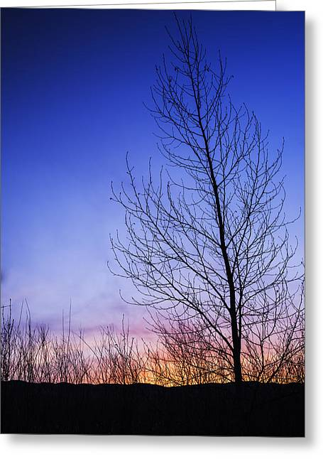Simple Beauty In Colors Greeting Cards - Beautiful sunrise in Boise Idaho USA Greeting Card by Vishwanath Bhat