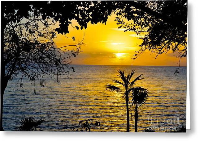 Tropical Oceans Greeting Cards - Beautiful Sunset Greeting Card by Debbi Granruth