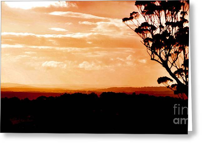 Warm Summer Greeting Cards - Beautiful sunset Greeting Card by Phill Petrovic