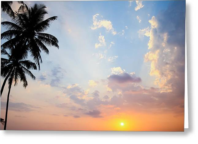 Amazing Sunset Greeting Cards - Beautiful Tropical Sunset Greeting Card by Nila Newsom