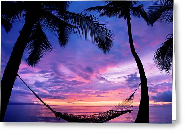 Beautiful Vacation Sunset, Hammock Greeting Card by Design Pics Vibe