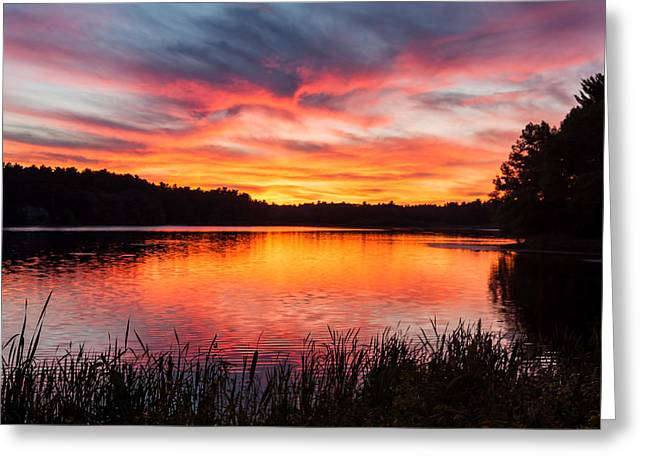 Dream Scape Greeting Cards - Beautiful Vibrant Sunset Greeting Card by Laura Duhaime