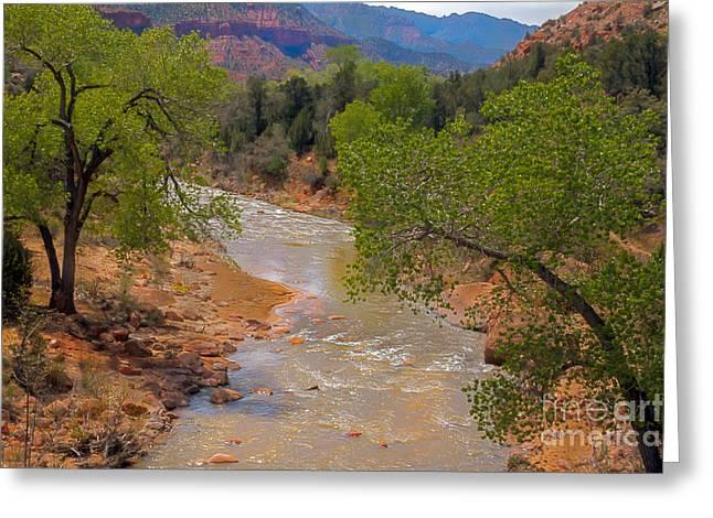 Navajo Basin Greeting Cards - Beautiful Virgin River Greeting Card by Robert Bales