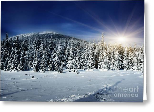 Snow-covered Landscape Pyrography Greeting Cards - Beautiful Winter Landscape with Snow Covered Trees Greeting Card by Boon Mee