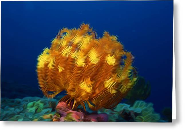 Coral Spawning Greeting Cards - Beautiful yellow coral 3 Greeting Card by Lanjee Chee