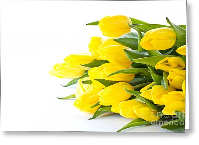 Beautiful Yellow Tulips Greeting Card by Boon Mee