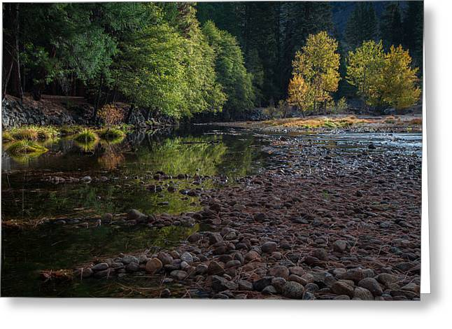 Yellow Trees Greeting Cards - Beautiful Yosemite National Park 2 Greeting Card by Larry Marshall