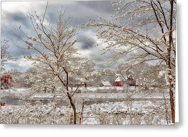 Beauty After The Storm Greeting Card by Tricia Marchlik