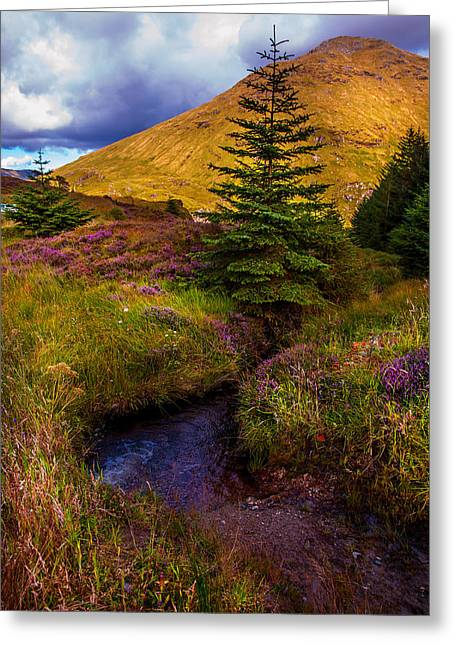 Beautiful Creek Greeting Cards - Beauty all Around. Rest and Be Thankful. Scotland Greeting Card by Jenny Rainbow