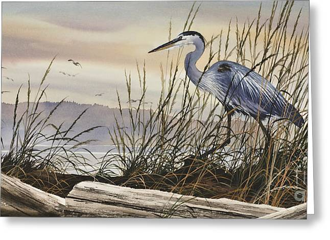 James Paintings Greeting Cards - Beauty Along the Shore Greeting Card by James Williamson