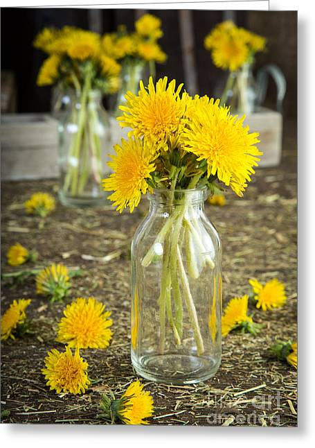Dandelions Greeting Cards - Beauty Among the Weeds Greeting Card by Edward Fielding