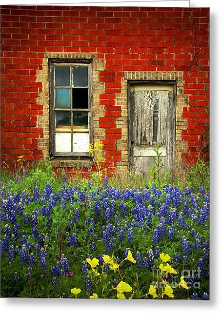 Floral Art Greeting Cards - Beauty and the Door - Texas Bluebonnets wildflowers landscape door flowers Greeting Card by Jon Holiday