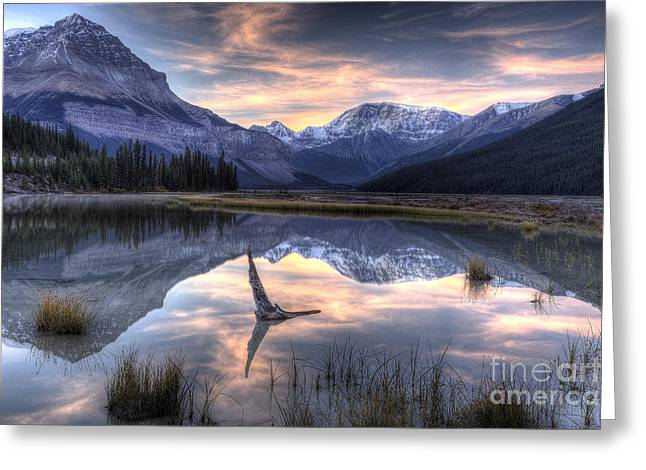 Beauty Creek Greeting Cards - Beauty Creek Pre-Dawn Greeting Card by Brian Stamm