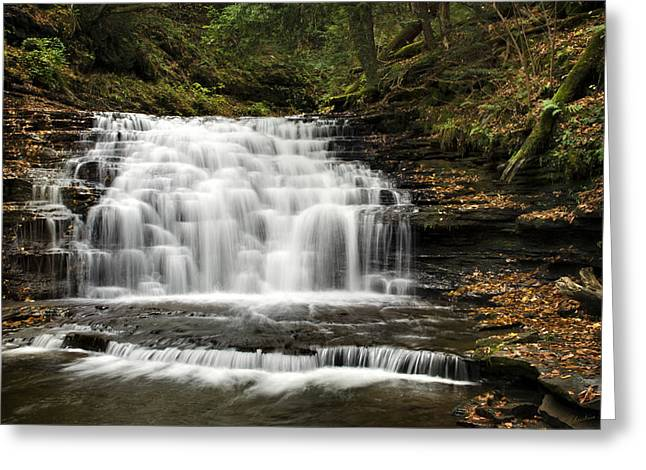 Nature Scene Greeting Cards - Beauty Falls Greeting Card by Christina Rollo