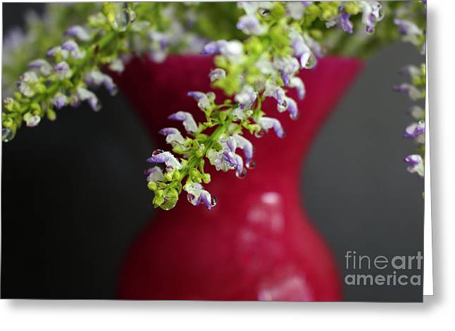 Interior Still Life Digital Greeting Cards - Beauty Hangs In The Balance Greeting Card by Ella Kaye Dickey