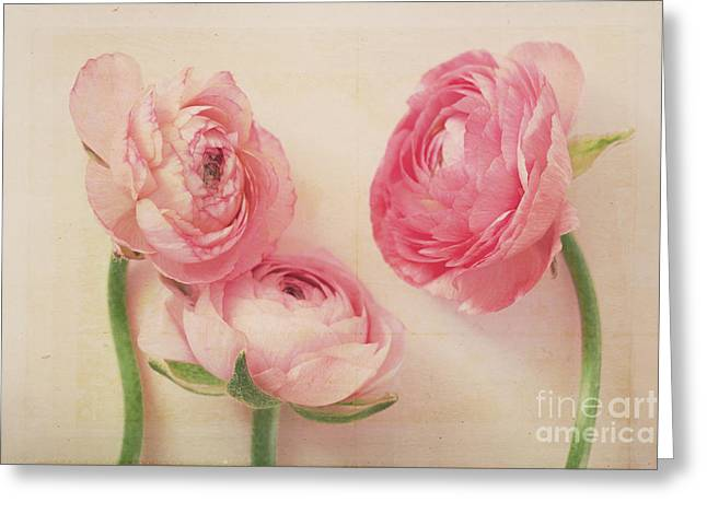 Pink Flower Prints Greeting Cards - Beauty in Simplicity Greeting Card by Kim Fearheiley
