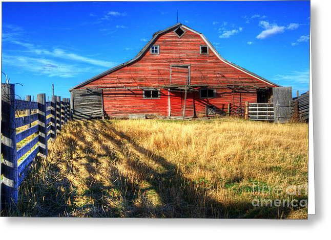 Alberta Landscape Greeting Cards - Beauty Of Barns 8 Greeting Card by Bob Christopher