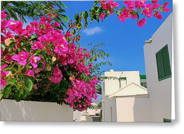 Beauty Of Lanzarote Greeting Card by Mountain Dreams