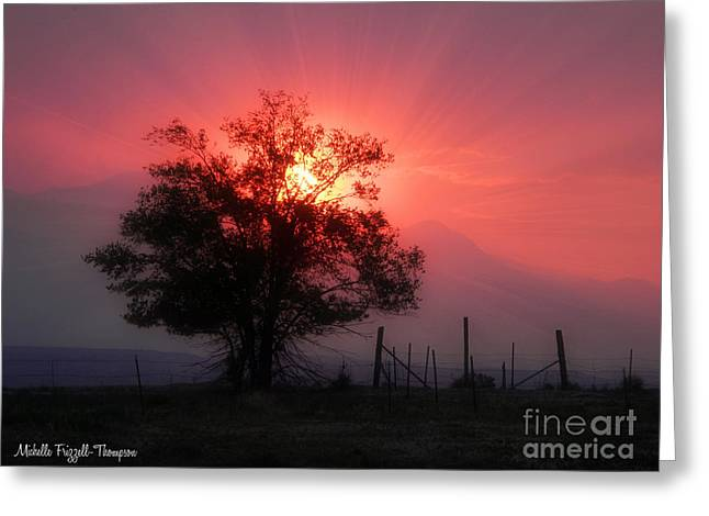 Frizzell Greeting Cards - Beauty of Sunset Greeting Card by Michelle Frizzell-Thompson