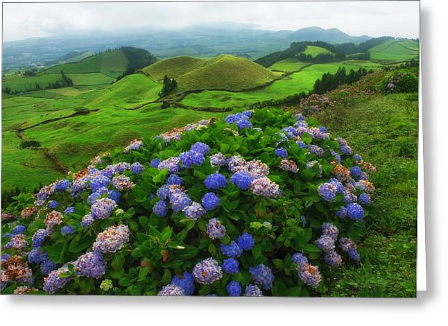 Azores Greeting Cards - Beauty of the Azores  Greeting Card by Mountain Dreams