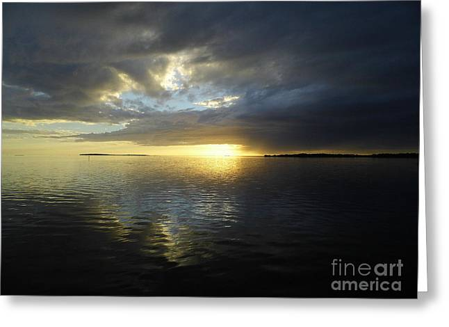Cedar Key Greeting Cards - Beauty Reflecting Over The Gulf Greeting Card by D Hackett