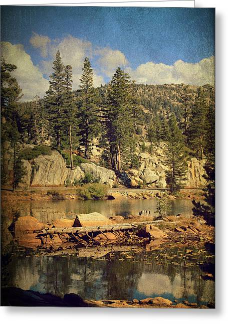 Textured Landscapes Greeting Cards - Beauty You Find Along the Way Greeting Card by Laurie Search