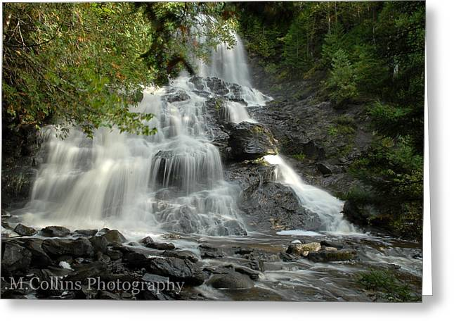 Tammy Collins Greeting Cards - Beaver Brook Falls Greeting Card by Tammy Collins