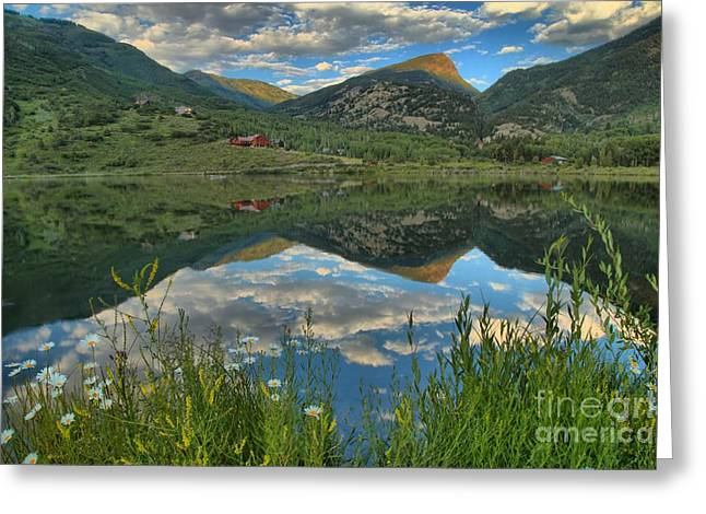 Marble Colorado Greeting Cards - Beaver Lake Wildflowers Greeting Card by Adam Jewell