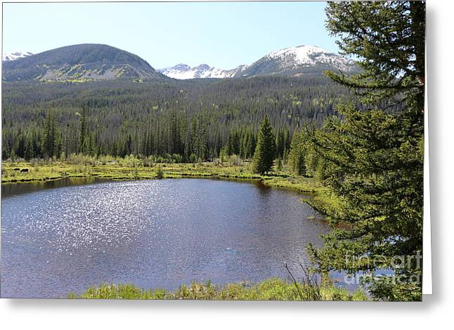 Mills Glacier Greeting Cards - Beaver Ponds Rocky Mountains NP Greeting Card by Christiane Schulze Art And Photography