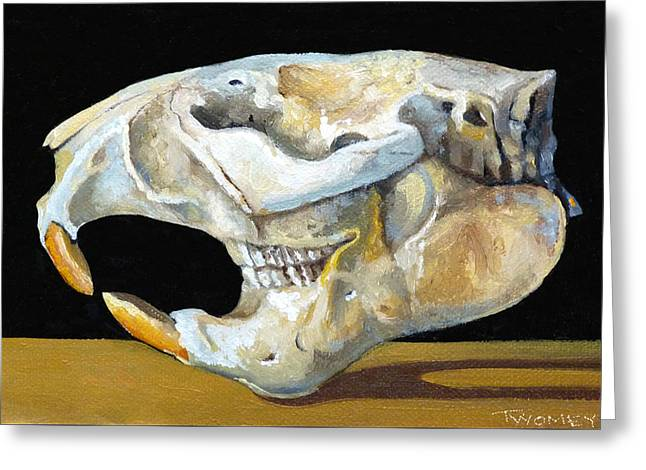 Beaver Skull 1 Greeting Card by Catherine Twomey