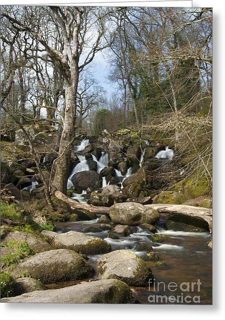 Becky Digital Art Greeting Cards - Becky Falls Dartmoor Greeting Card by Donald Davis