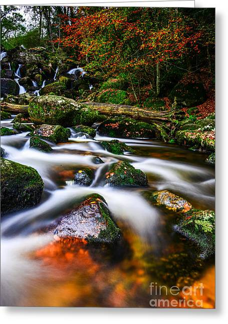 Becky Greeting Cards - Becky Falls Greeting Card by Tracey Yeo