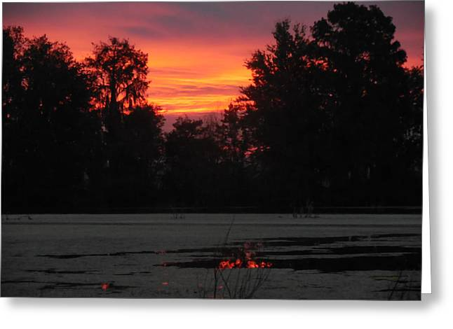 Becky Greeting Cards - Beckys Sunrise over Alligator Lake Greeting Card by RoyD Erickson