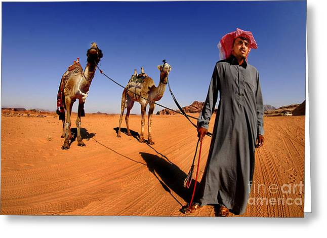 Jordanian Greeting Cards - Bedouin and camels Greeting Card by Dan Yeger