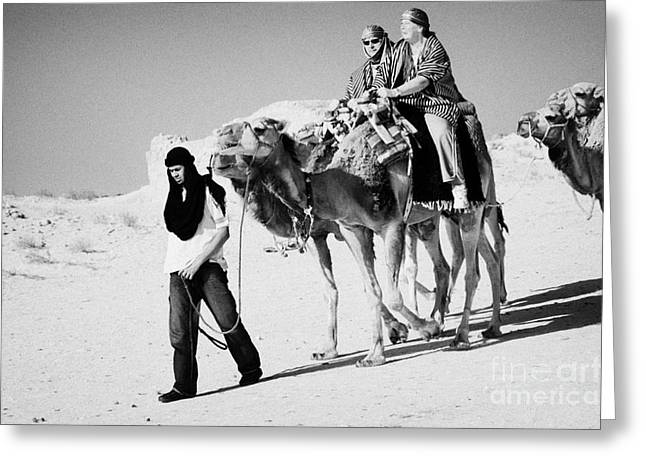 bedouin guide in modern clothing leads british tourists riding camels and wearing desert clothes into the sahara desert at Douz Tunisia Greeting Card by Joe Fox