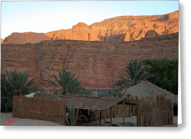 Bamboo House Greeting Cards - Beduin Camp in the Sinai Desert Egypt Greeting Card by Colette V Hera  Guggenheim