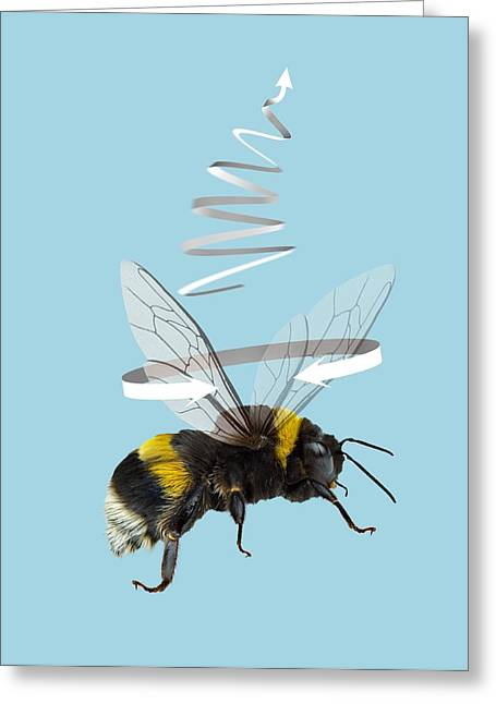 Bee In Flight Greeting Cards - Bee flight, artwork Greeting Card by Science Photo Library