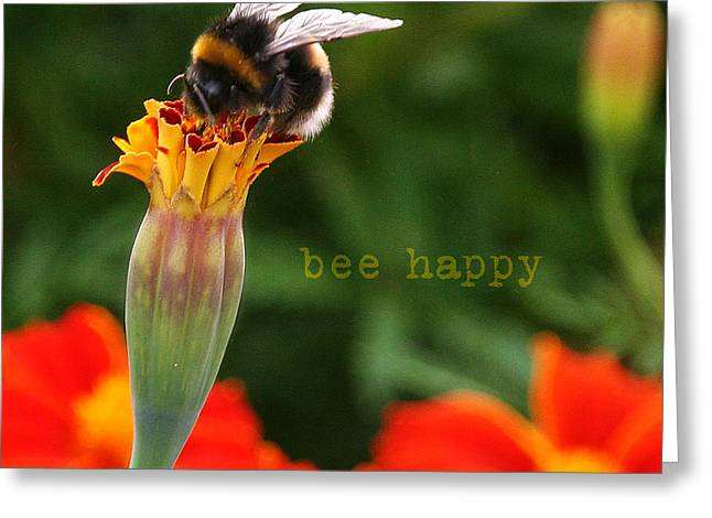 Empowerment Greeting Cards - Bee Happy Greeting Card by Diane Enright