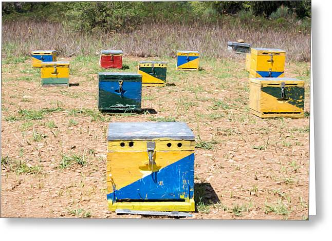 Greek Insects Greeting Cards - Bee Hives 2 Greeting Card by Roy Pedersen