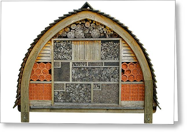 Component Greeting Cards - Bee Hotel Greeting Card by Olivier Le Queinec