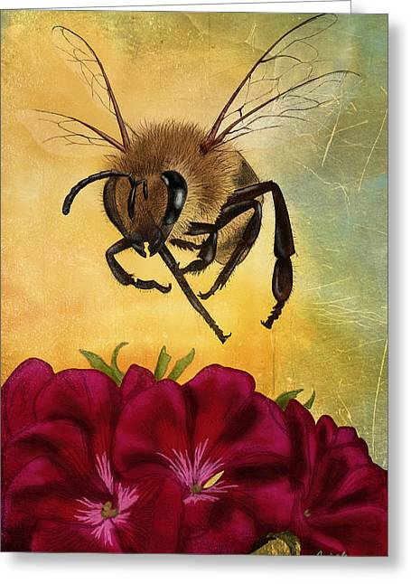 Geranium Greeting Cards - Bee I Greeting Card by April Moen