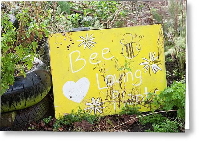 Bee Loving Plants Greeting Card by Ashley Cooper