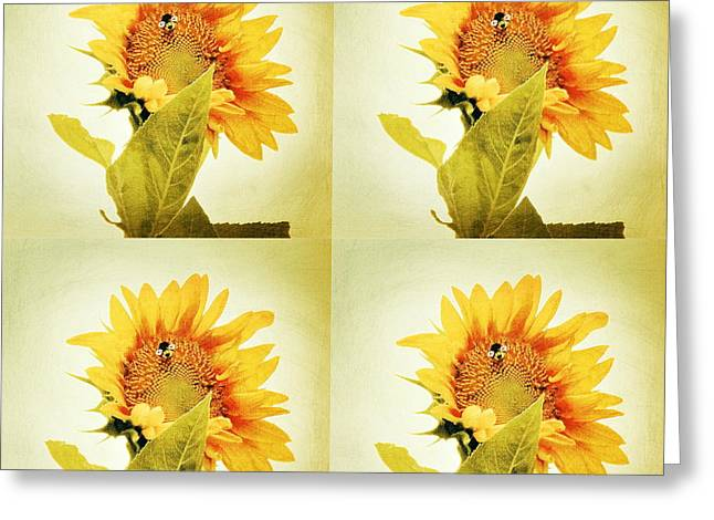 Pallet Knife Greeting Cards - Bee Mine - Paint Four Square Greeting Card by Anita Faye